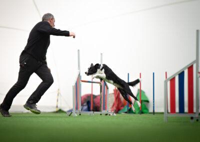 centro-cinofilo-felicia-addestramento-cani-bologna-slide-home-1