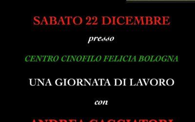 Stage Agility con Andrea Cacciatori