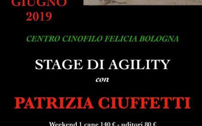 Stage di Agility con Patrizia Ciuffetti