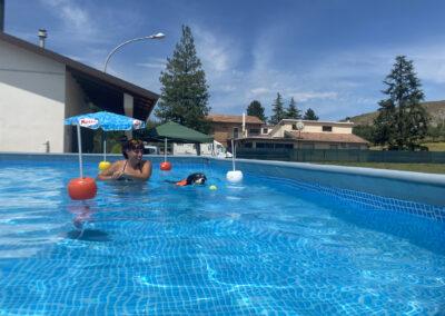 centro-cinofilo-felicia-addestramento-cani-bologna-attivita-sportive-gallery-swim-dog-sports-8