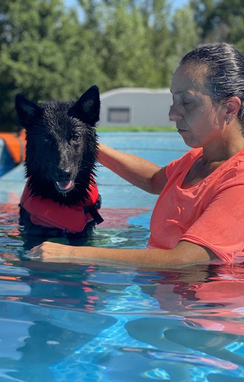 Swim Dog Sport