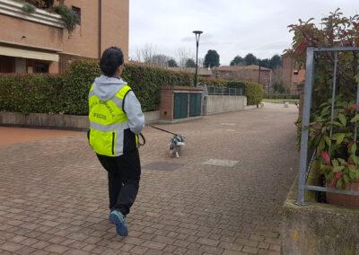 centro-cinofilo-felicia-addestramento-cani-bologna-attivita-sportive-gallery-mantrailing-2