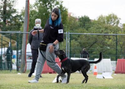 centro-cinofilo-felicia-addestramento-cani-bologna-attivita-sportive-gallery-rally-obedience-1