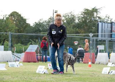 centro-cinofilo-felicia-addestramento-cani-bologna-attivita-sportive-gallery-rally-obedience-2