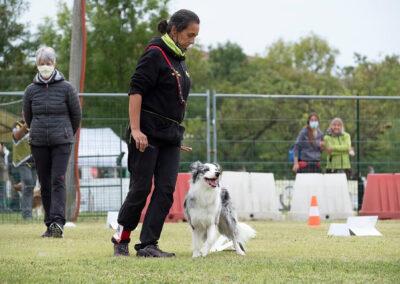 centro-cinofilo-felicia-addestramento-cani-bologna-attivita-sportive-gallery-rally-obedience-3