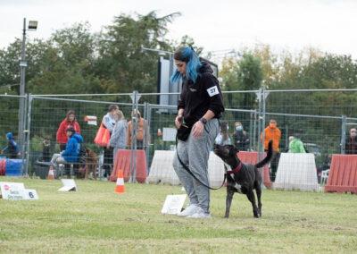 centro-cinofilo-felicia-addestramento-cani-bologna-attivita-sportive-gallery-rally-obedience
