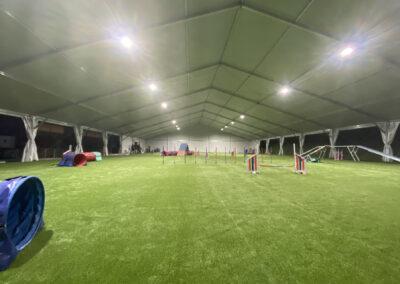 centro-cinofilo-felicia-addestramento-cani-bologna-il-centro-gallery-5